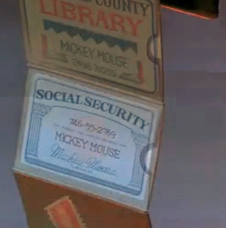 Mouse - Have Does A Mickey Disney Diary Number Security Social Yes
