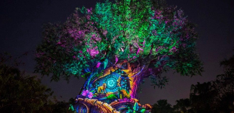 Review New Tree Of Life Awakenings Featuring The Lion King