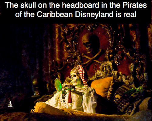 featured image the-skull-on-the-headboard-in-the-pirates-of-the-caribbean-disneyland-is-real