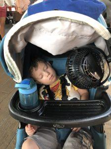 Stroller at Disney