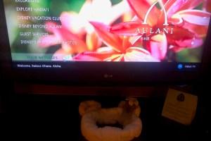Aulani TV