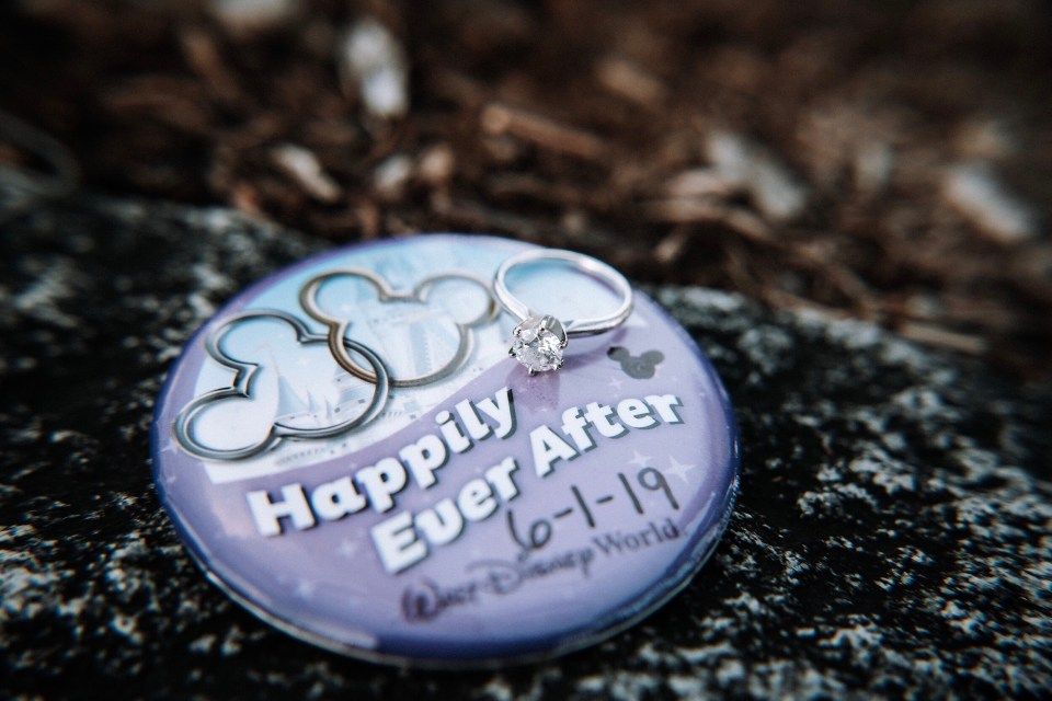 Disney Proposal - Button