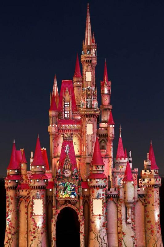 Cinderellas Castle Looks Romantic For Valentines Day