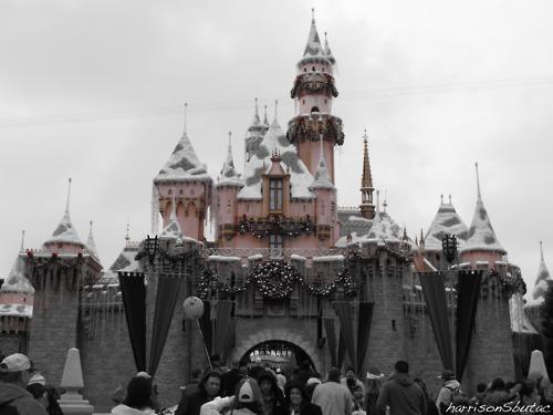 Disneyland Christmas 2010 Sleeping Beauty Winter Castle