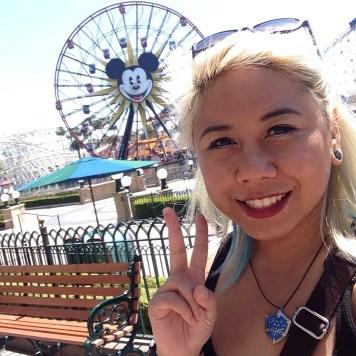 Disneyexaminer Ideal Disneyland Day Zeila Selfie Mickeys Fun Wheel
