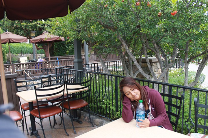 Sonoma Terrace Disney California Adventure Best Place To Nap