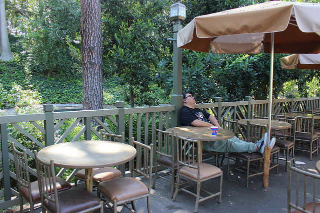 Best Places To Nap At Disneyland Hungry Bear Restaurant
