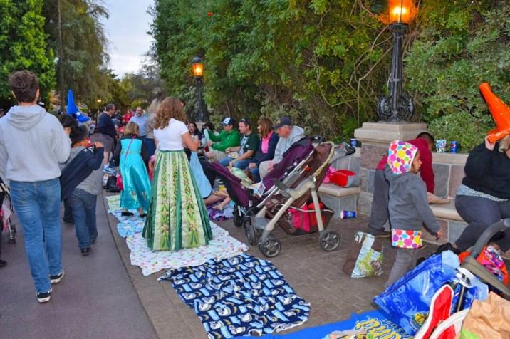 Disneyland Parade Blankets