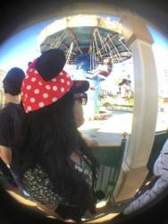 Disneyland Pass Renewal Cons DisneyExaminer 6