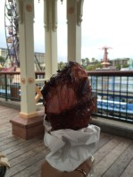 Turkey leg at DCA