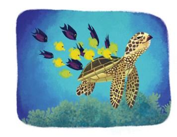 Jeannine Schafer Sea Turtle