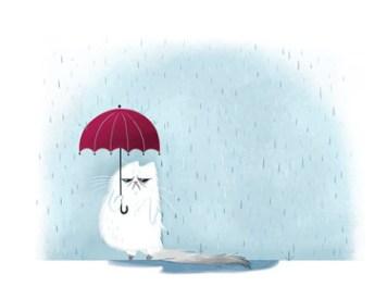 Jeannine Schafer Umbrella Problems