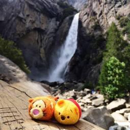 yosemite-falls-pooh-tigger