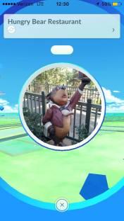 pokemon-go-critter-country-1