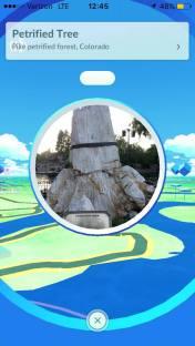 pokemon-go-frontierland-1
