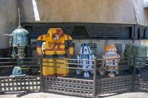 These are some of the Droids you might be looking for at Black Spire Outpost in Droid Alley. Photo by Mark Eades.