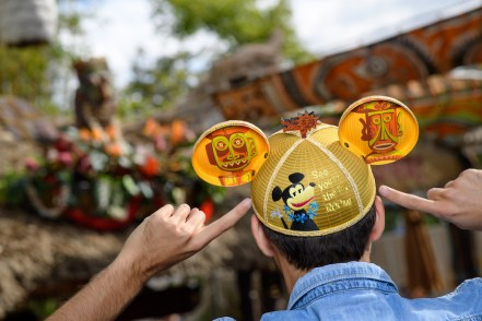 mickey-mouse-ears-special-edition-disney-6