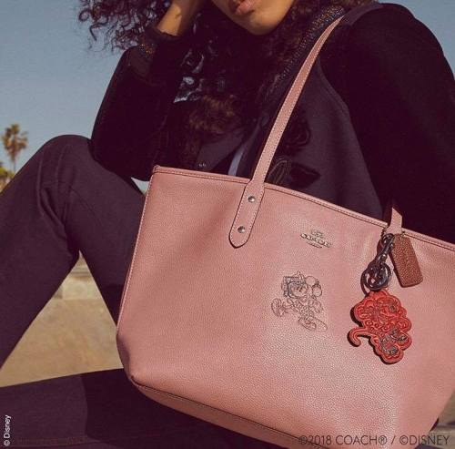 0b56e2e8a The main collection debuted at the Coach Store in Disney Springs with a few  exclusives, but it looks like Macy's has a few surprises of it's own.