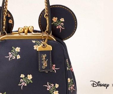 Disney x Coach Bags