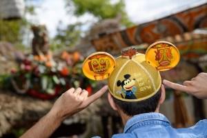 Disney Parks Designer Collection