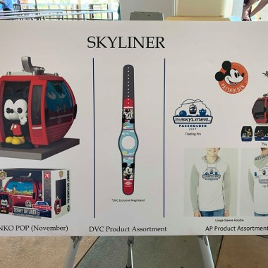 Disney Skyliner Merchandise