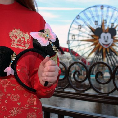 Disney Lunar New Year Merchandise
