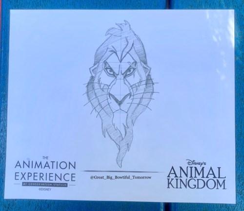 Disney's Animal Kingdom Bucket List