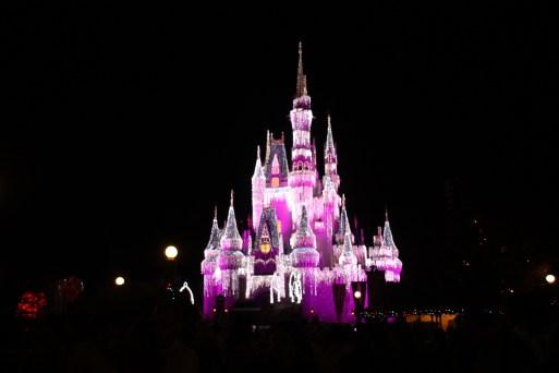 Magic Kingdom Ice Castle