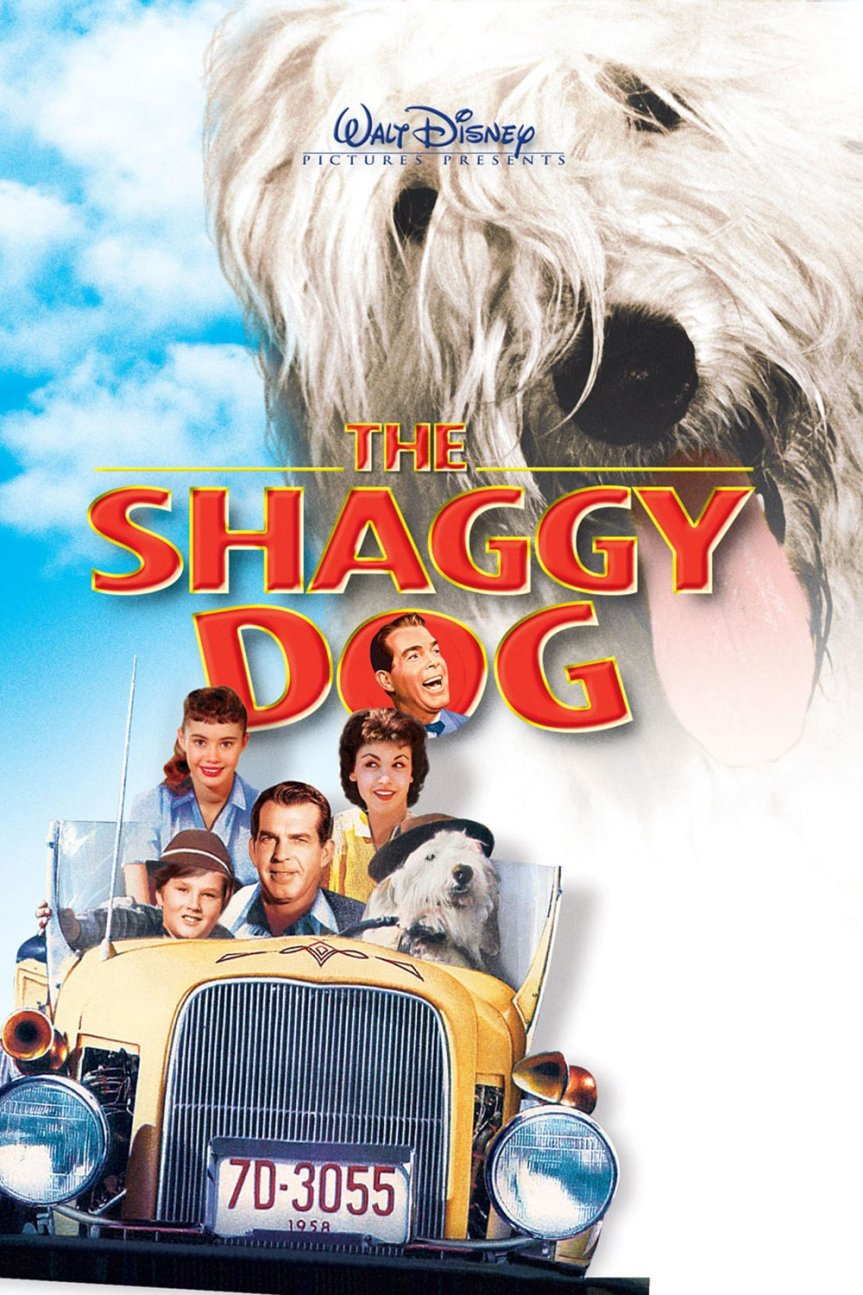 """Poster for the movie """"The Shaggy Dog"""""""