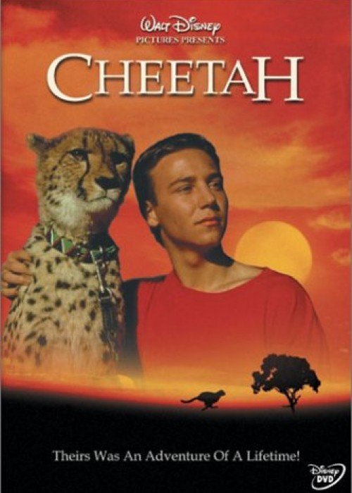 """Poster for the movie """"Cheetah"""""""