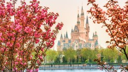 Shanghai Disneyland Resort news