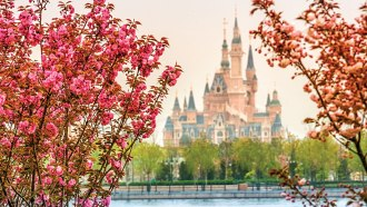 Shanghai Disneyland Resort news