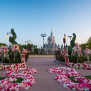 How To: Have Your Wedding at Cinderella's Castle at Walt Disney World