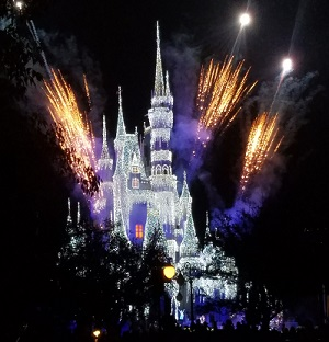 A Frozen Holiday Wish Cinderella castle disney world
