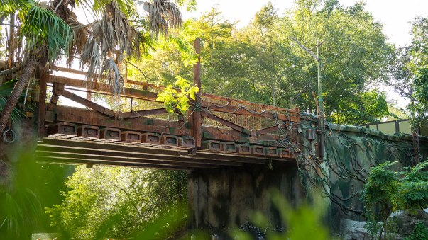 avatar land live stream pandora world of avatar bridge