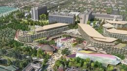 new disneyland hotel