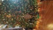 Animal Kingdom Lodge - Christmas 2017   Disney World Photos