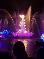 Rivers of Light (Disney World)