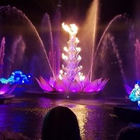 Rivers of Light (Disney World Show)