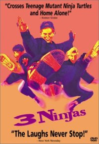 3 Ninjas (Touchstone Movie)