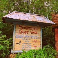 Maharajah Jungle Trek (Disney World Exhibit)