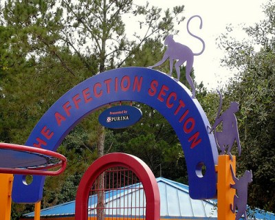 Affection Section (Disney World Exhibit)