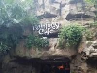 Rainforest Café Restaurant  (Disney World)