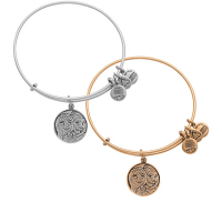 Anna and Elsa Bangle by Alex and Ani – Frozen | Disney Jewelry
