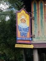 Kali River Rapids (Disney World Ride)