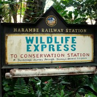Wildlife Express Train (Disney World)
