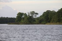 Discovery Island | Extinct Disney World Attractions