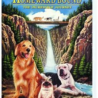 Homeward Bound: The Incredible Journey (1993 Movie)