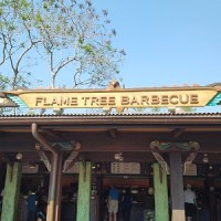 Flame Tree Barbecue (Disney World)