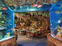 Rainforest Cafe At Disney Springs Marketplace